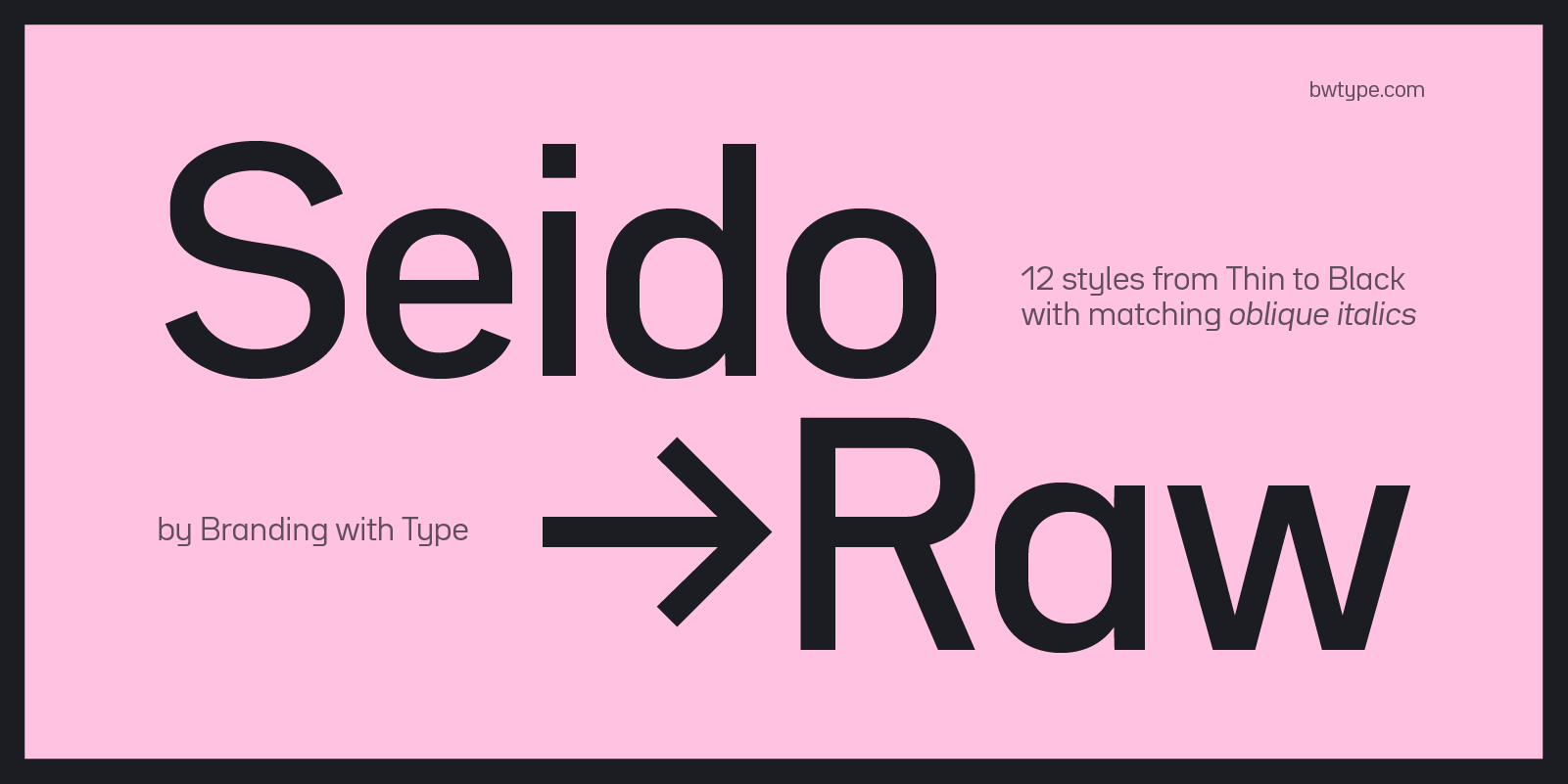 Bw Seido Raw font family